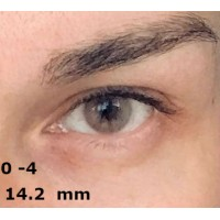 EOS lotie brown D=14 mm до -4